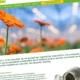 Preview nieuwe website van Komeco