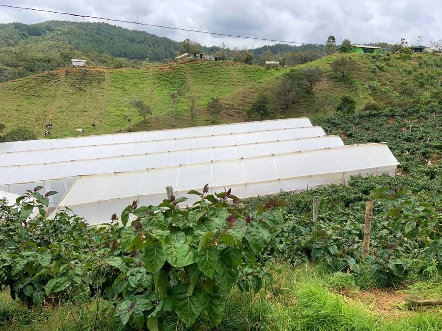 On-a-field-trip-in-Colombia