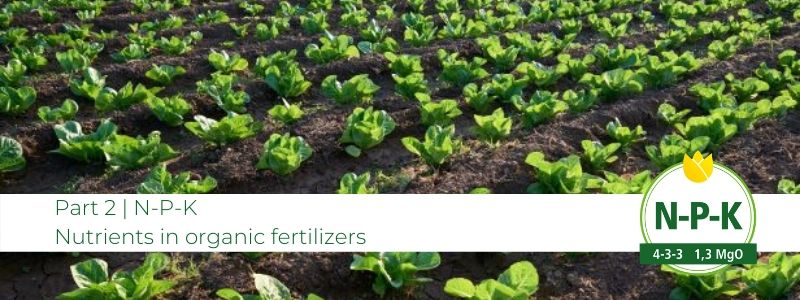part-2-npk-in-organic-fertilizers-www