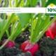 part-3-calcium-magnesium-in-organic-fertilizers-fb