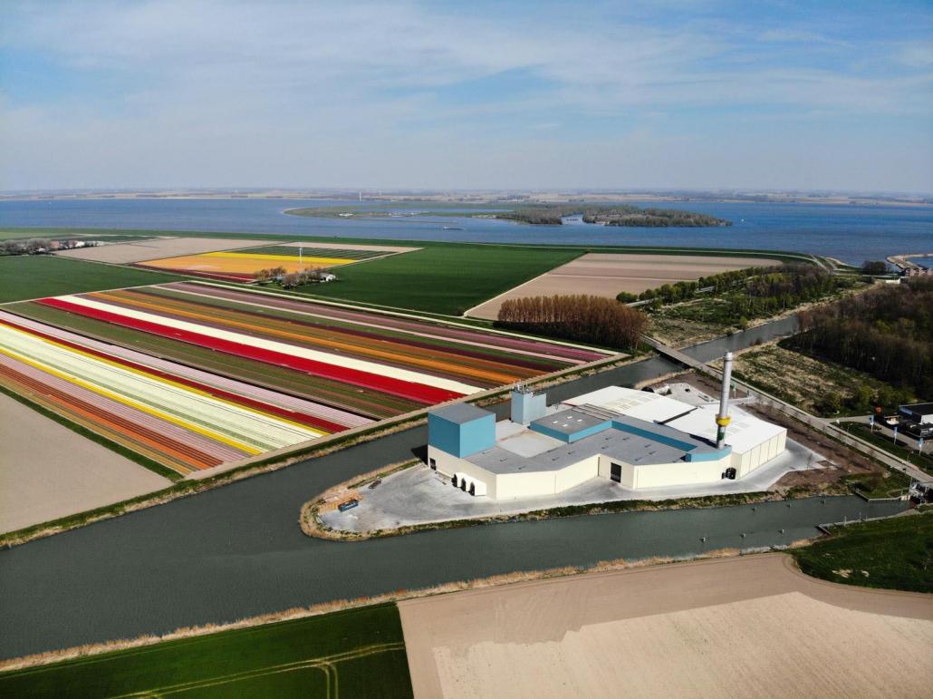 Tulip-fields-Netherlands-Komeco