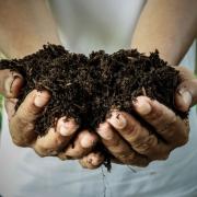 wat is effectieve organische stof